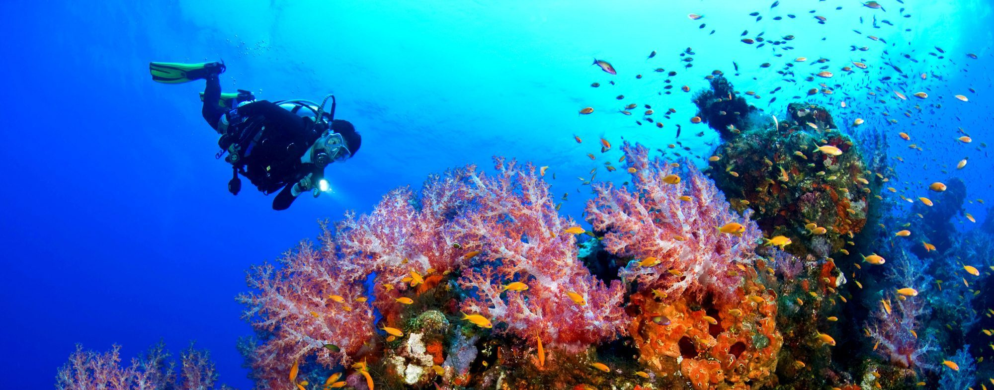 Diving Center in Gran Canaria (R247) - LivCanarie